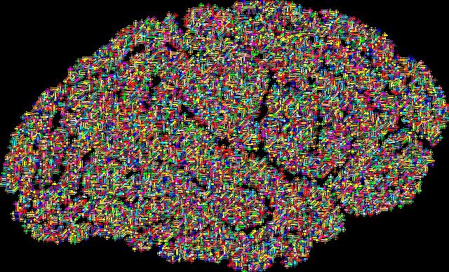 cranium-2099083_640